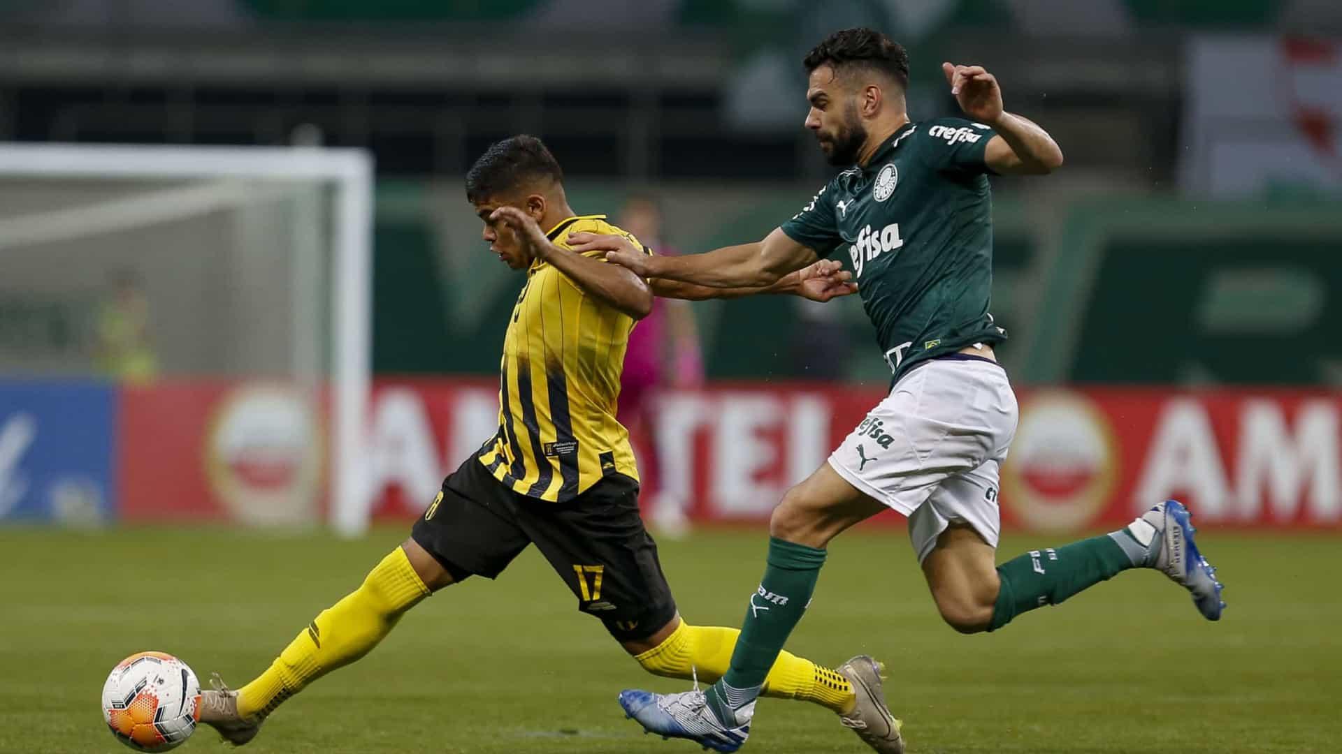 Palmeiras negocia volante Bruno Henrique com time na Arábia Saudita